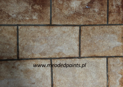 IMG_1307_cegly-TF-color-floor